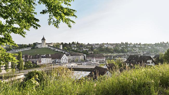 Schweiz. ganz natuerlich. Blick ueber den Rhein auf Munot und Schaffhausen.